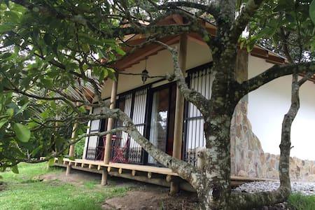 Romance and Nature - La Margarita - Santa Elena - Luontohotelli