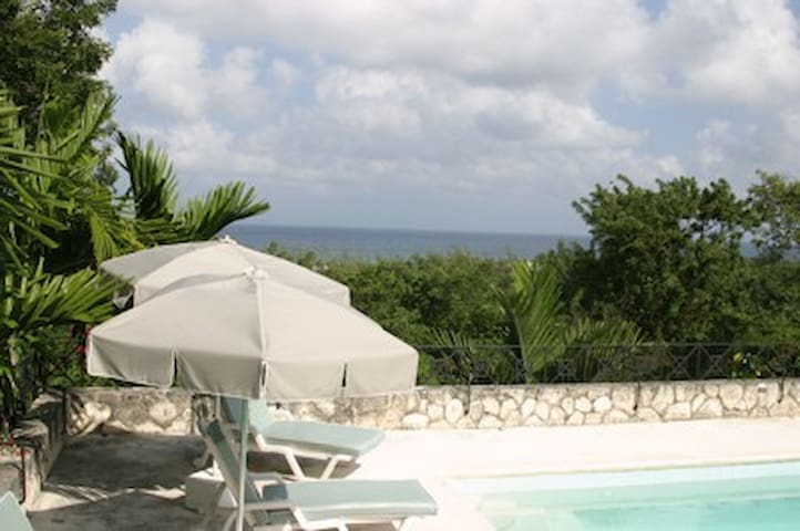 Montego Bay Villa-ocean view/private pool/staff