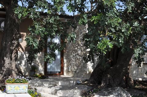 La casetta di Papaleo