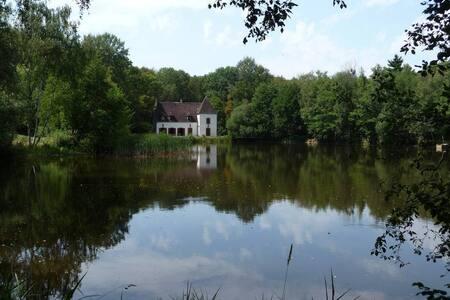 Stunning house in the Bourgogne region in France - Diges - Lägenhet