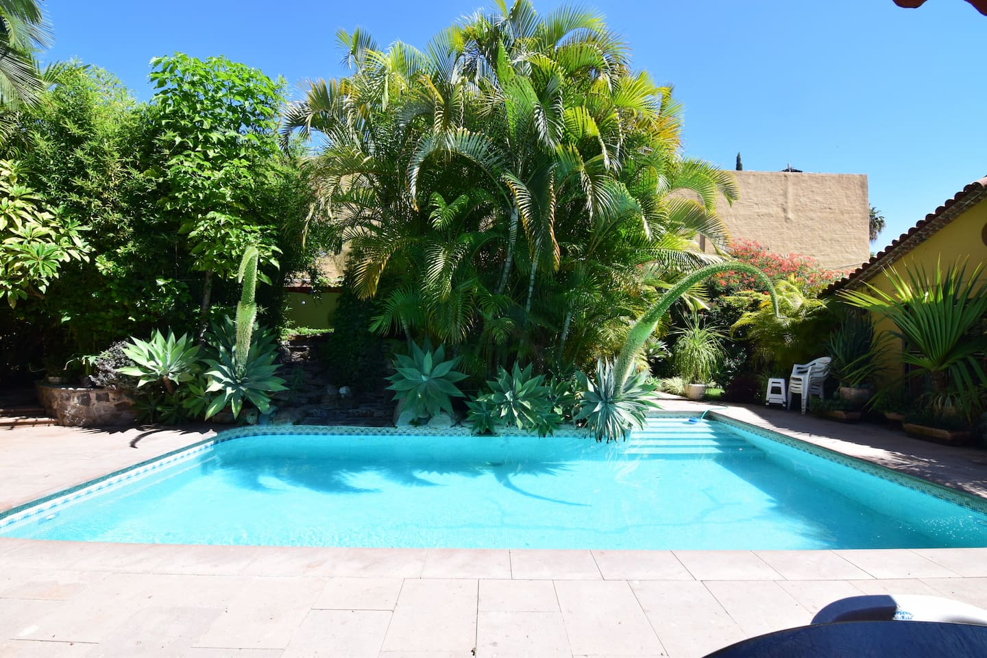 Solar heated swimming pool surrounded by lush garden