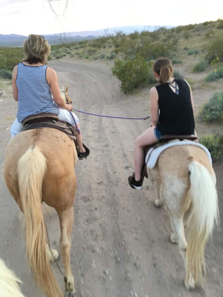 Ponying the Pony