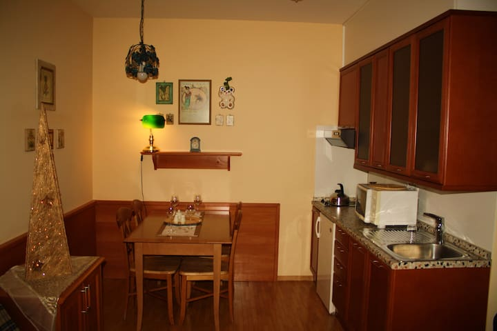 Apartment in the CITY CENTER of Bled!!