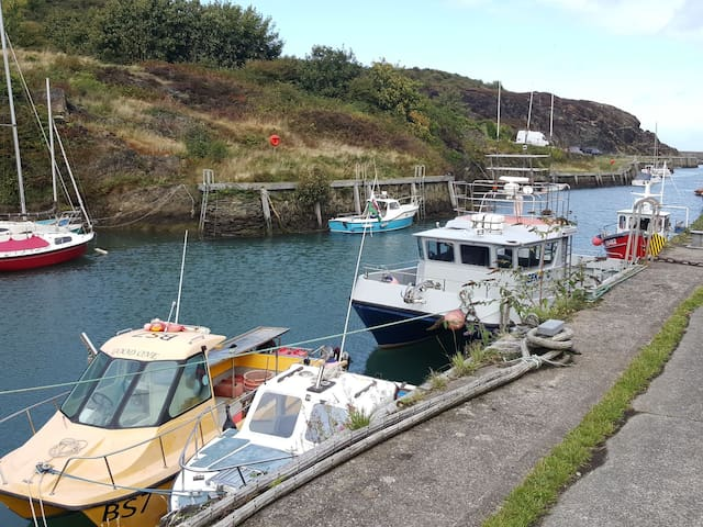 Amlwch Port and Copper trail