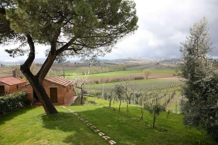 Appartamento in casa colonica tipica della toscana - Montepulciano - Pis