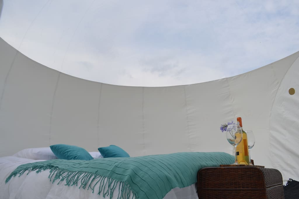 Interior carpa burbuja.  Con cama matrimonial.