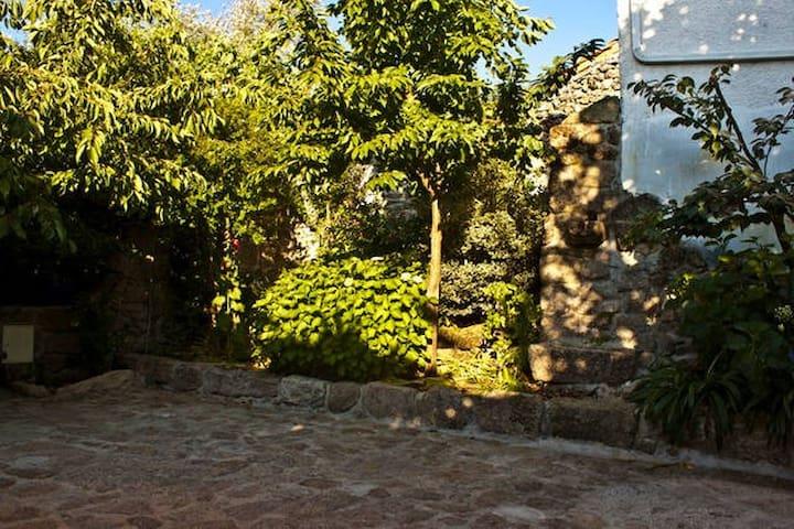 Casa das Magnólias de Igarei 2