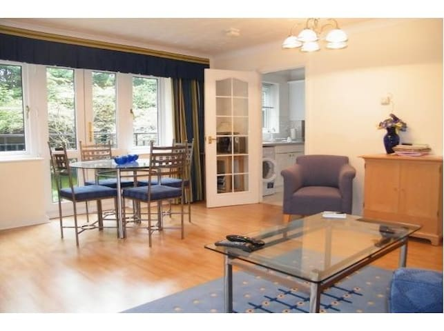 MC Fully Serviced Apartment, Free Wi-Fi, SKY - Basingstoke - Apartment