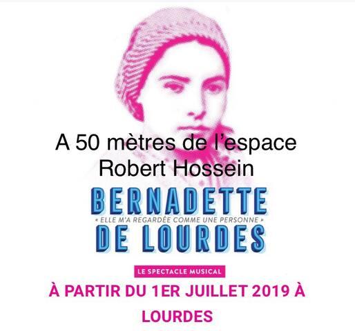 Lourdes Gare Sanctuaires a 10min
