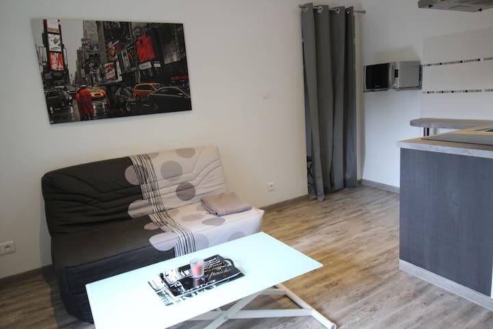 Mignon Studio sur Pau - Pau - Pis
