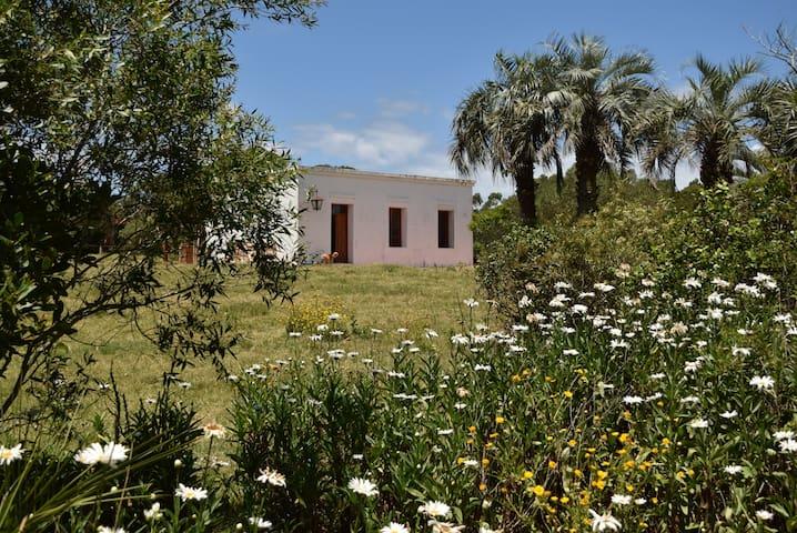 Cottage near Cabo Polonio