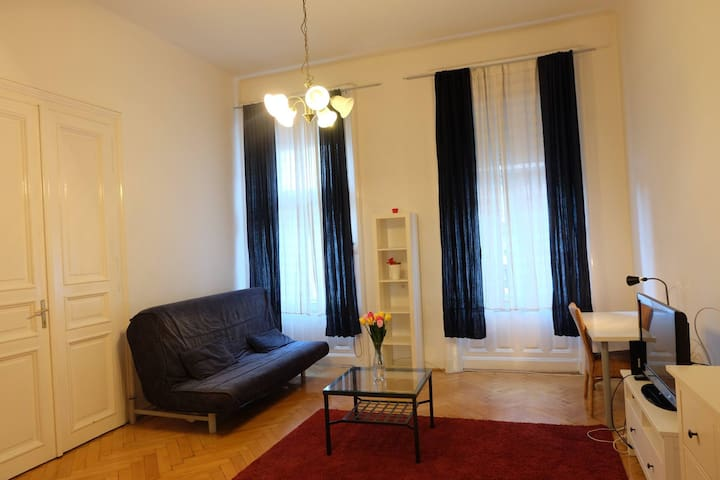 Bright and spacious room in Budapest