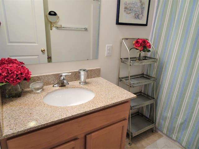 Guest Bathroom - full