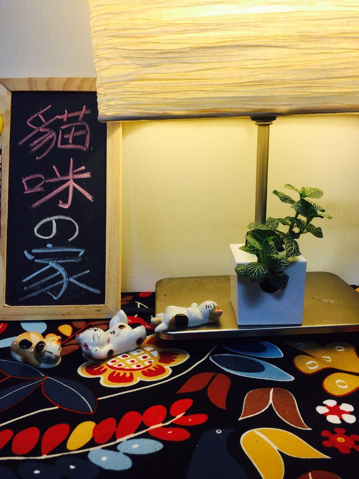 a cozy double room in convenient area 跟貓住一晚(交通方便)