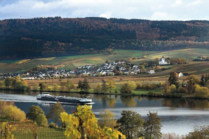 """""""Ferienhaus Mosella"""" Riol nahe Trier, Kultur,Sport"""