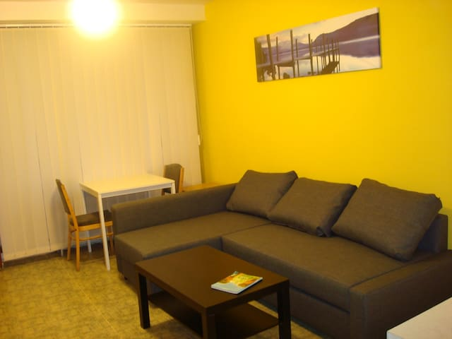 Studio directly on metro, 10 min from centre - Praha - Huoneisto