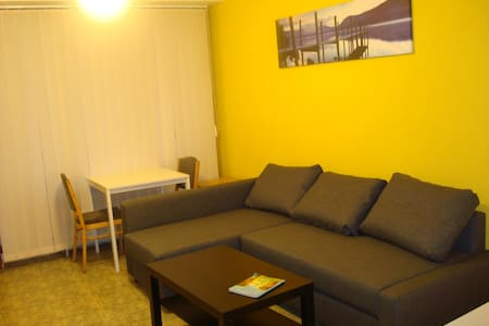 Studio directly on metro, 10 min from center - Prague - Apartment