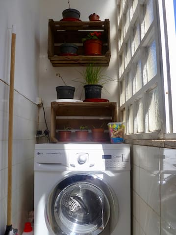 Washing machine and our first attempts at gardening