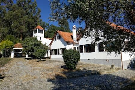 Villa for 10 + biopool, central Portugal, 25719/AL - Couto do Mosteiro - Huvila
