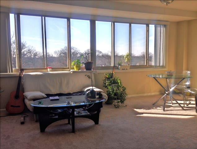 Bright, spacious top-floor apartment near DC/UMD - Hyattsville - Apartment