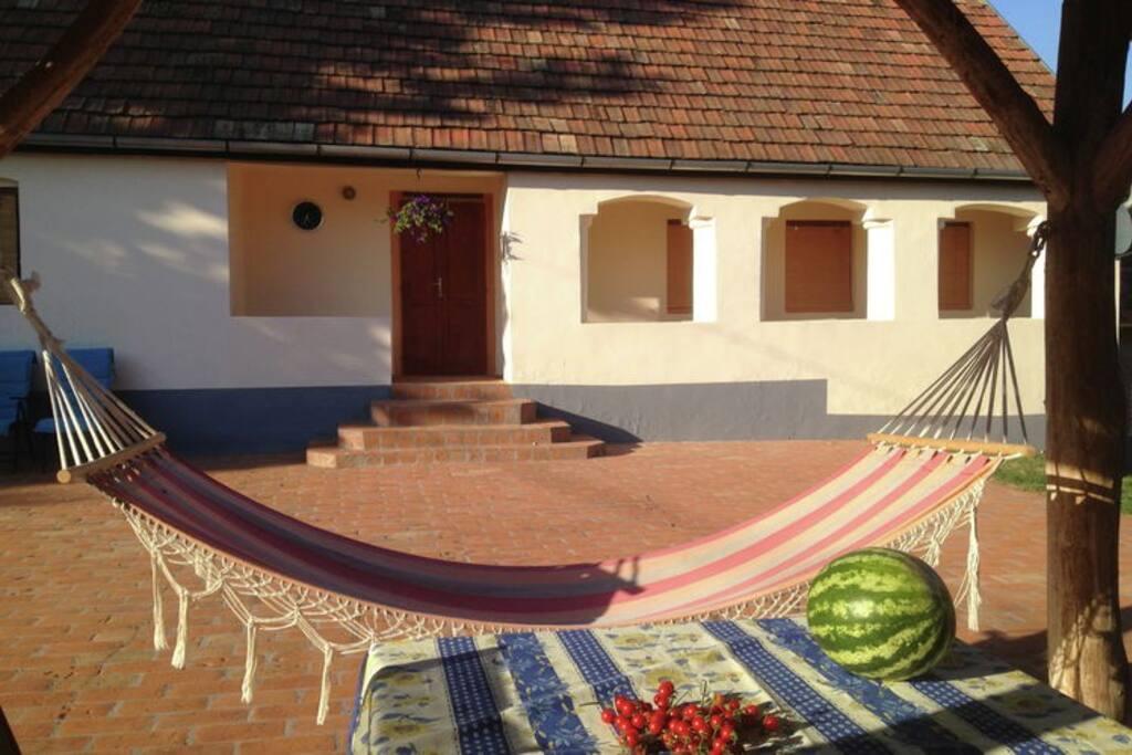 Voorhuis met groot terras en overkapping