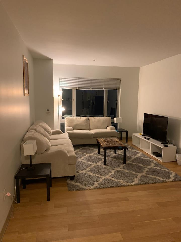 Boston Luxury 1 bedroom apartment