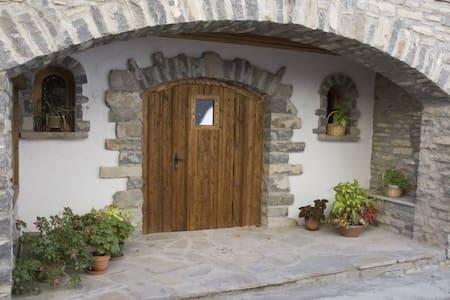 Apartamento rural Pirineo Aragonés, c/chimenea - Javierregay