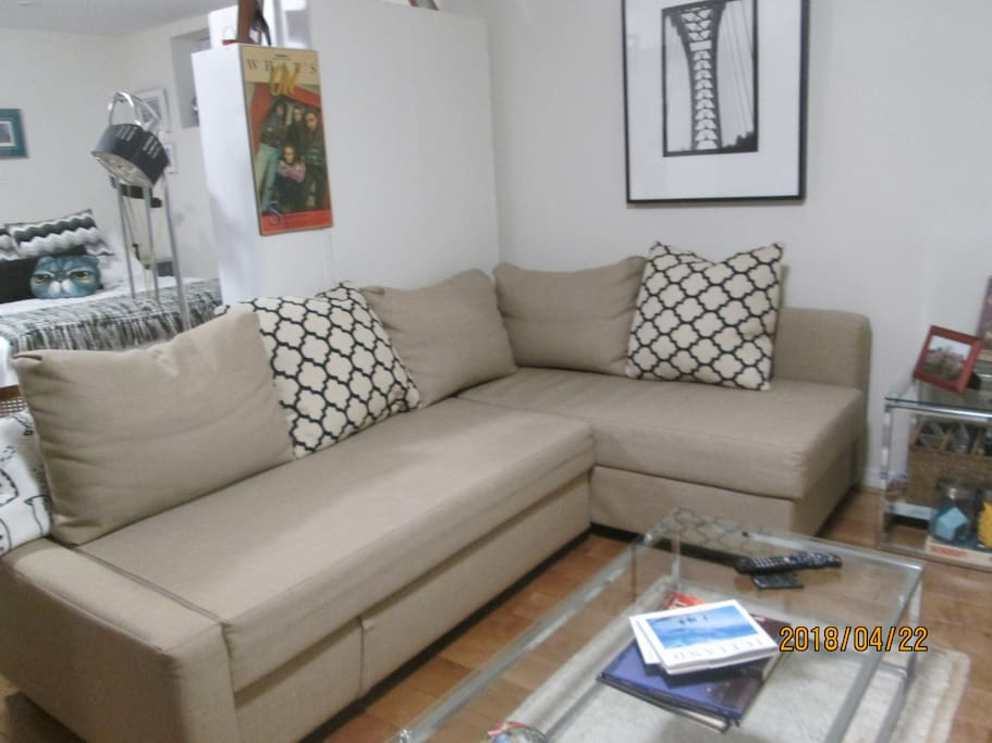 living area - sectional couch