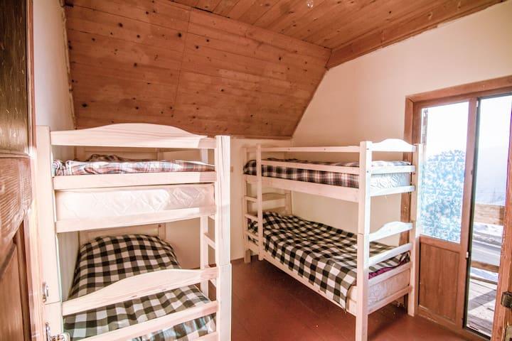 Big Trip Hostel