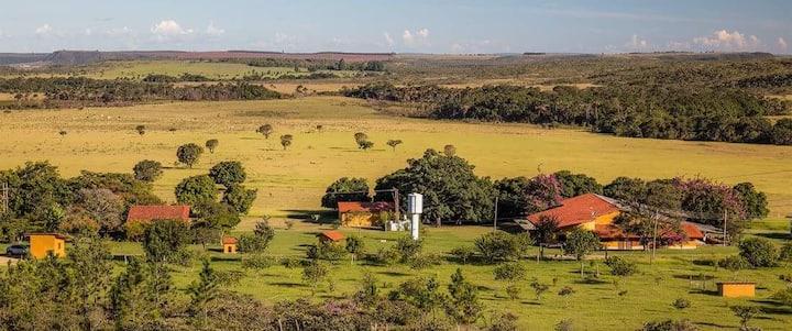 Fazenda Iluminada - Entire Farm