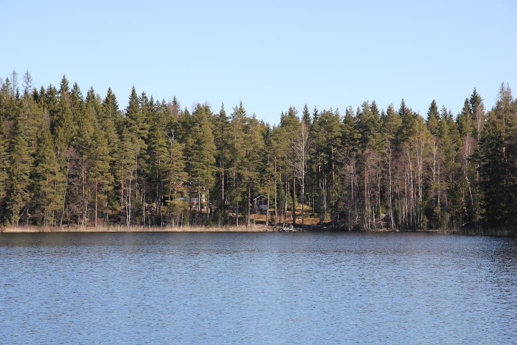 Näkymä järveltä mökille, cottage behind the trees