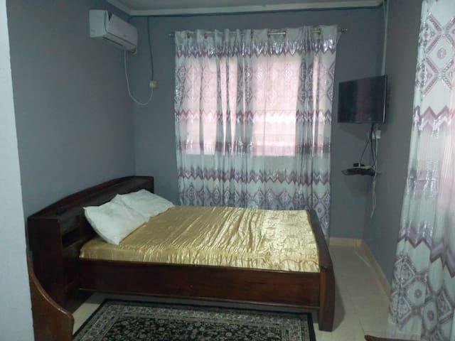 Great Room For Rent in 2 Bedroom Apt Freetown