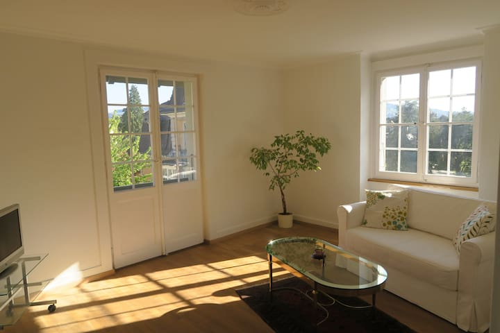Central appartment close to the city of Bern - Bern - Apartment