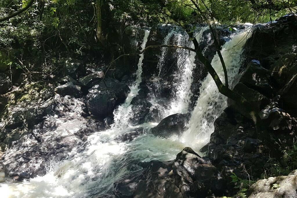 Cascada de mas de 5 metros de caída y pozas para poder bañarse en el agua y disfrutar rodeado de naturaleza