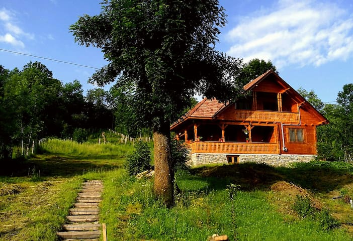 New house built in old Romanian style - Bertea - Villa