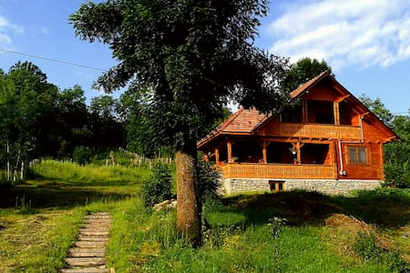 New house built in old Romanian style - Bertea - Vila