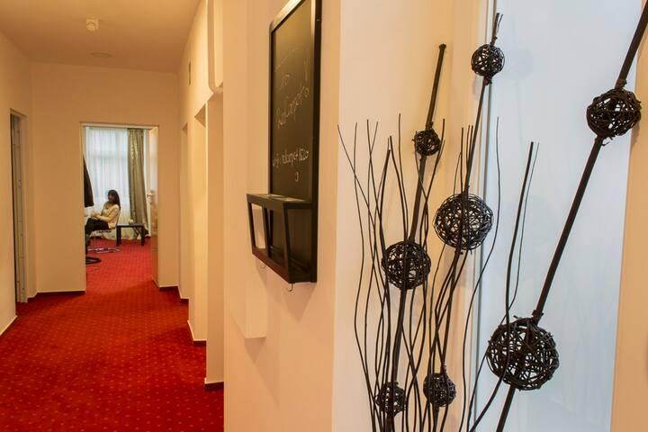 Luxury aptartment in city center - Zagreb - Lägenhet
