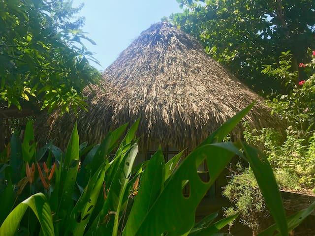 Hamacas en Típico Kiosco de Palma / Cocina y Baño