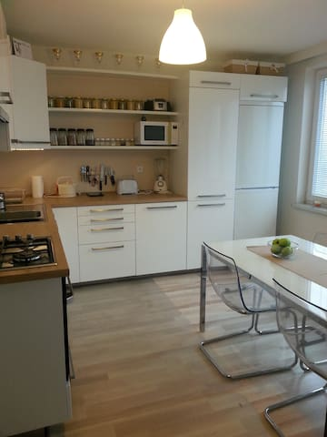 AWESOME APARTMENT near PRAGUE - Příbram - Leilighet