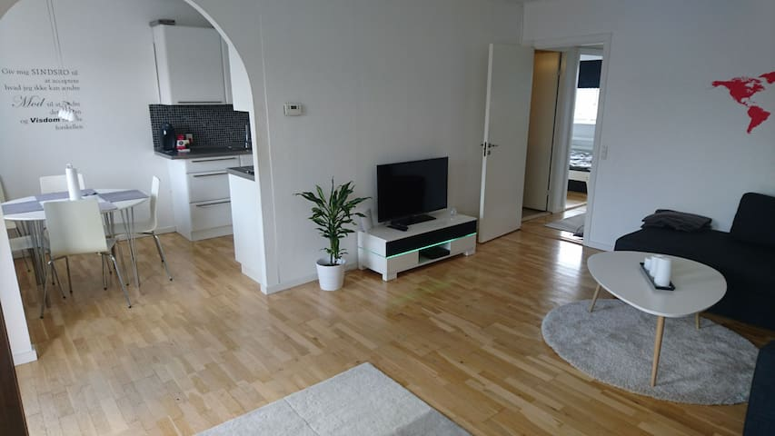 Spacious and quiet flat - close to Copenhagen