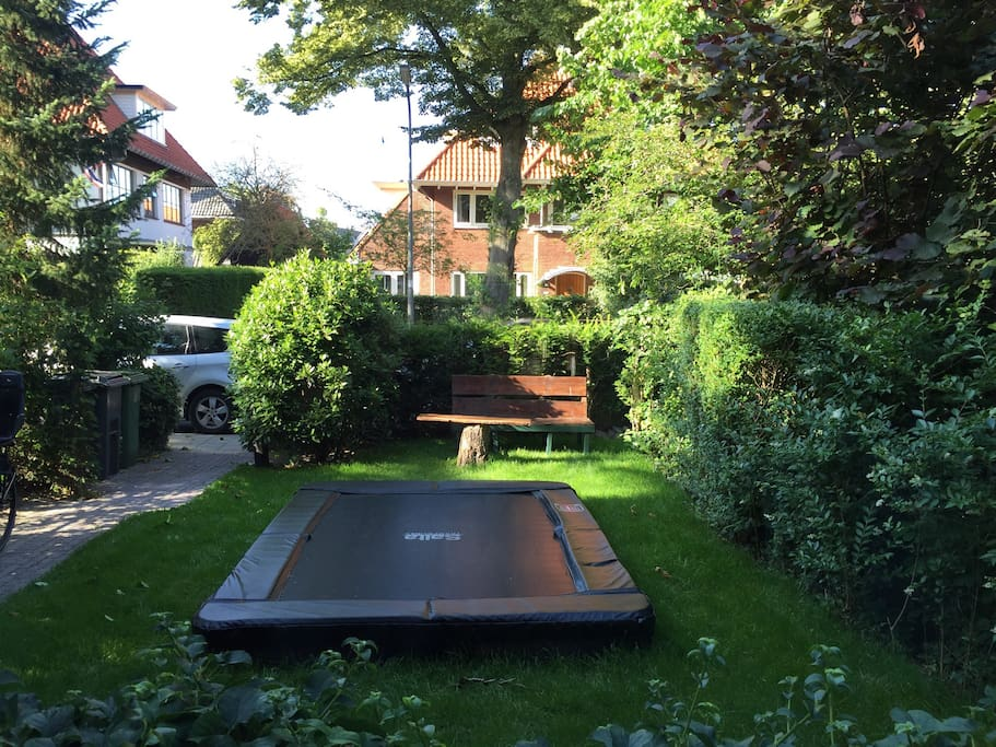 Trampoline in front yard