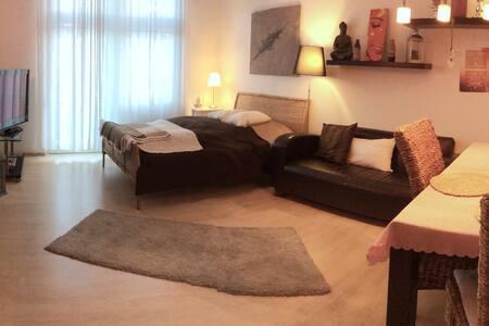 Schöne, gemütliche Wohnung Freiburg - Freiburg im Breisgau - Lejlighed