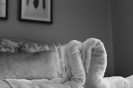 Comfy, Quiet Queen Bed *Dependable Hosts!*