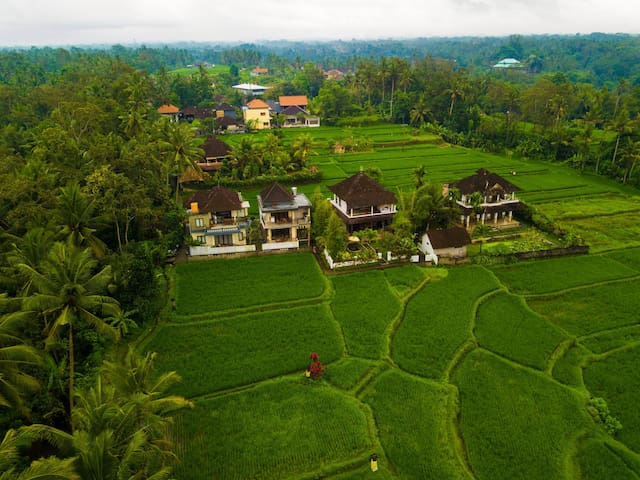 Birds Eye View of The Inn Possible Ubud