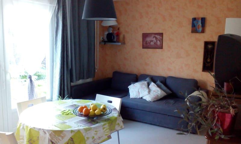 Maison tranquille a proximité châteaux vignobles - Nouzilly - House