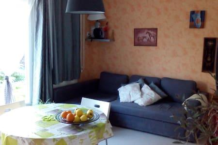 Maison tranquille a proximité châteaux vignobles - Nouzilly - Huis