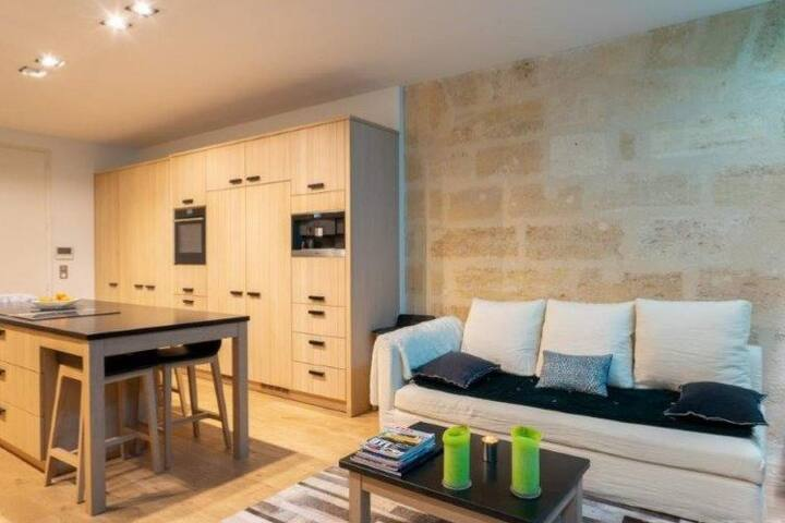 Superb and large apartment in historic center