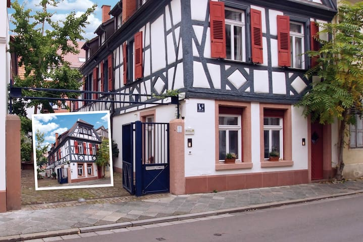 Modernes Apartment mit Historie - Speyer - Apartament