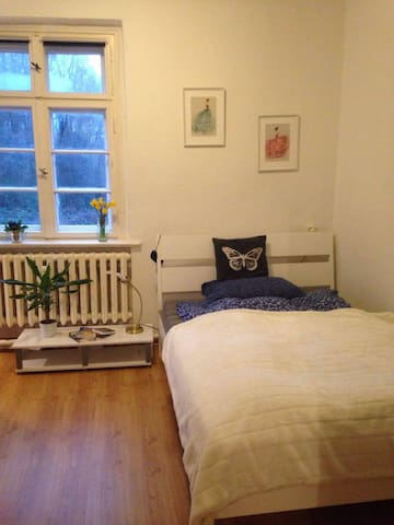 nice room in the city center // 230 € per month - Frankfurt (Oder) - Appartement