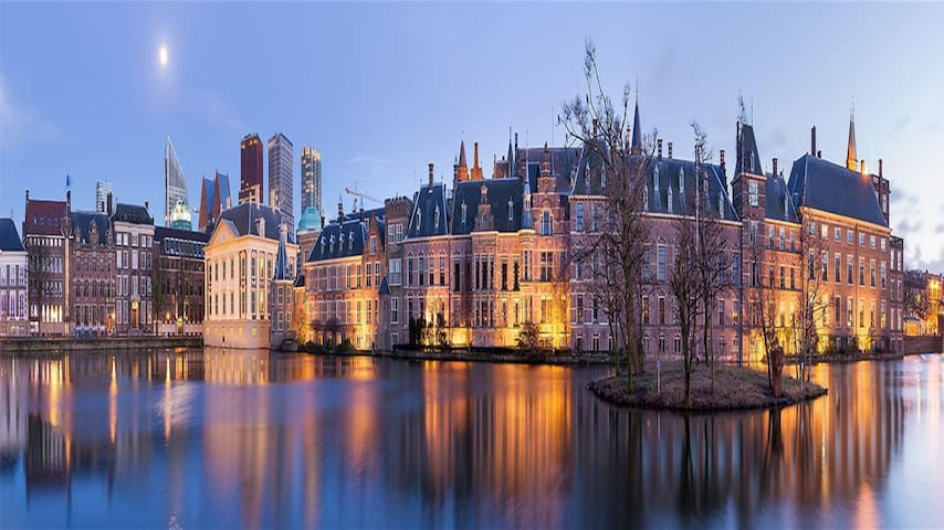 The Best of The Hague